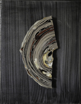 20120319195610-specimen_39