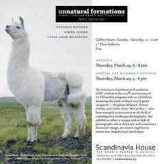 20120321191734-unnatural_formations_opening_invite