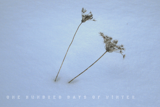 20120325182235-winter_postcard