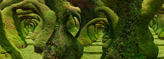 20120326154338-topiary