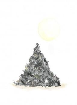 20120326184745-singh_collective_noun_avec_sun-241x330