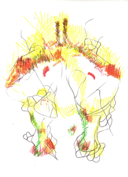 20120329022543-drawing_specimen_13