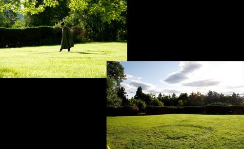 20120329154821-pujol_grass_circle_lr