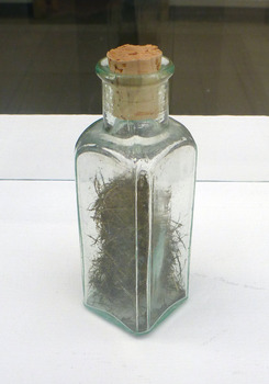 20120329155137-pujol_bottle_email