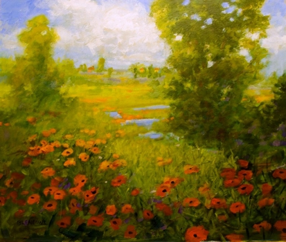 Poppies_in_summer