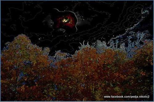 20120401121300-crna_rupa_mle_nog_puta_nad_banstolom_copy