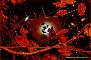 20120401124432-kad_na_orahu_rodi_gro__e_copy