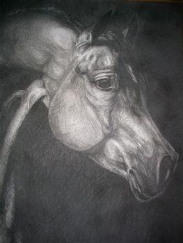 Horse_by_cvarci