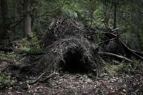 20120410145041-the_dwellings_4