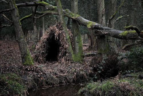 20120410145203-the_dwellings_10