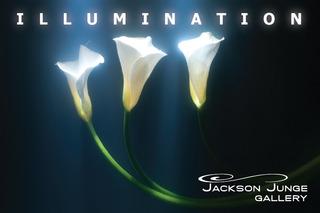 20120412171231-illuminationj2postcard-01