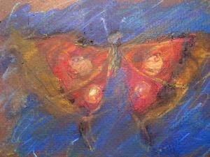 20120412172325-butterfly_02_lr