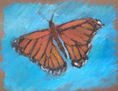 20120412172401-butterfly_03_lr