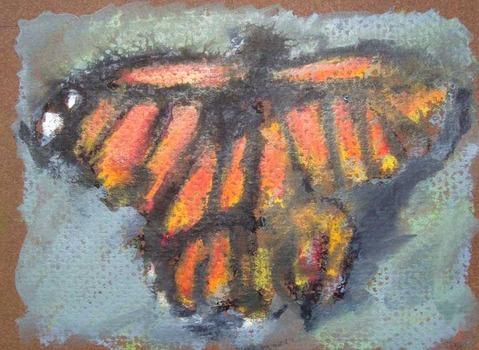 20120412172509-butterfly_05_lr