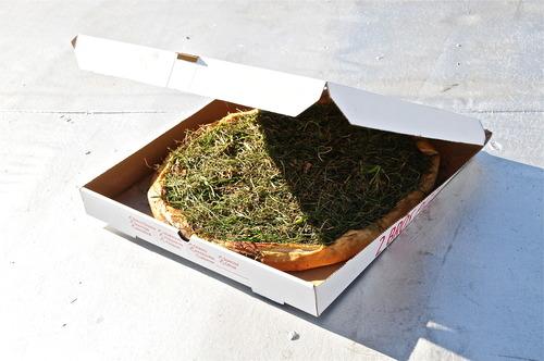 20120413185121-pizza