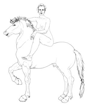 20120414162026-hest2_utsnitt_copy