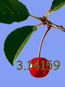 20120417005817-cherrysinglebrush8withpi