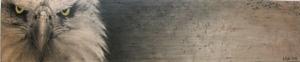 20120417035412-birds_eye_4_x_17_charcoal_on_wood