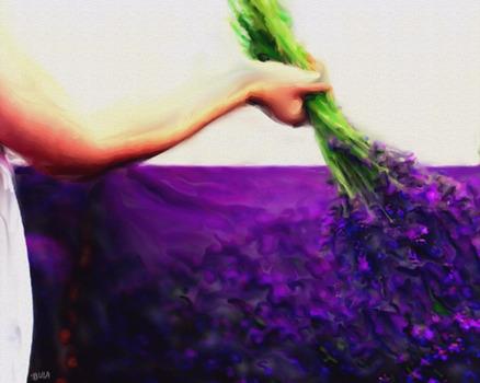 20120421051744-lavenderintuscany_lg
