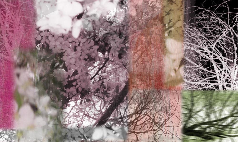 20120425053533-spring4