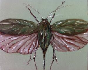 20120427182819-insect_folha
