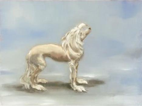 20120427230135-39sa-dogs-24x30cm2