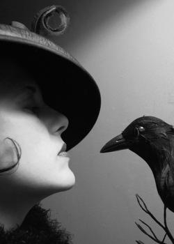 20120506043821-twobirds