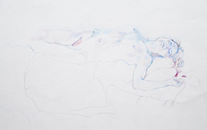 20120510074444-pale_nude_coloured_pencil