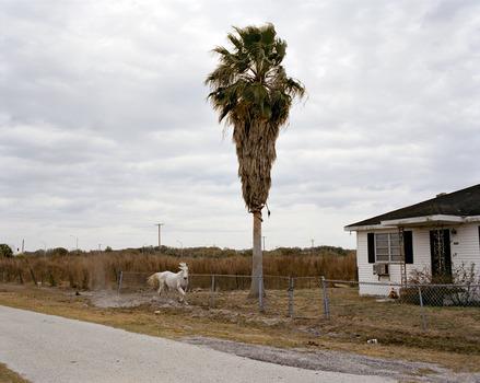 20120514101028-4_whitehorse