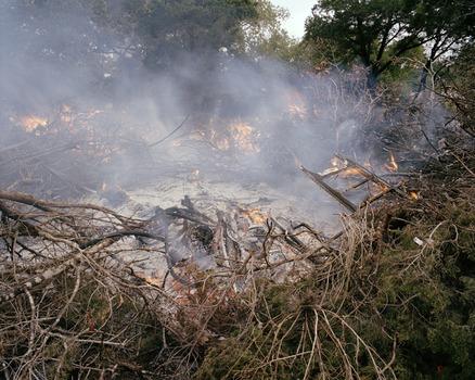 20120514101834-6_burningbrush
