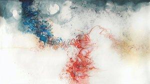 20120514164746-sarah_olson_blue_red_2008