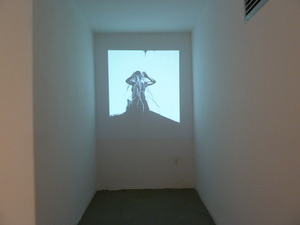 20120514190352-exhibition_shot_medusa_video