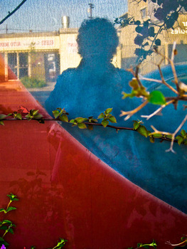 20120515011246-ssydney_self-portrait_reflecting_on_bouganvilla