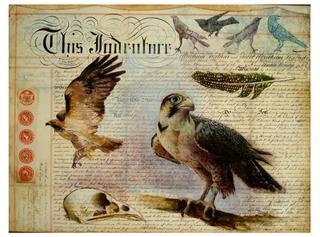 20120515165208-falcon__mixed_media_document