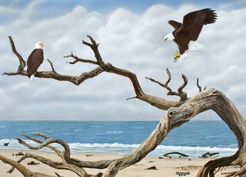 20120517193331-lunch_at_driftwood_beach_print