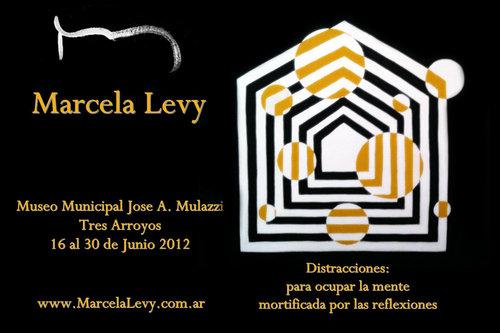 20120610081055-flyer_tres_arroyos_levy