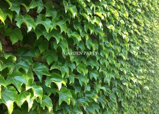20120523185120-garden_party_card_copy