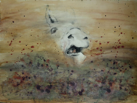 20120524154829-swallowed_horse_montypelr