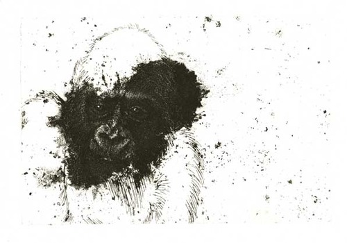 20120524160832-through_humans_scope-gorillalr