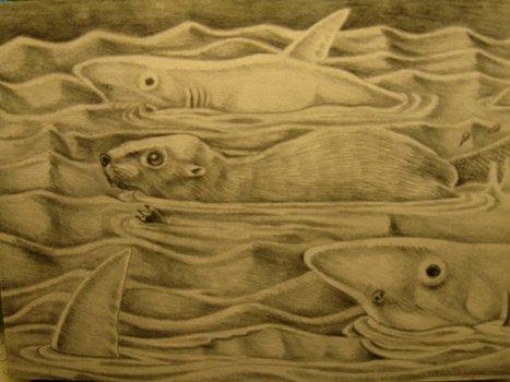 20120604171459-bill_sharks