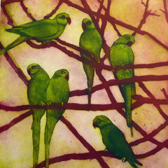 20120606162054-susie_perring_city_birds_2012_aquatint__275_unframed__360_framed_resized
