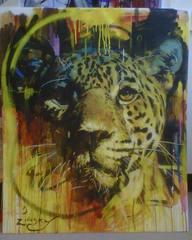 20120606163252-_jaguar__-_zinsky