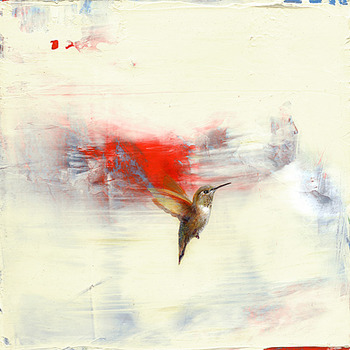 20120607190144-greg_ragland_rufous_on_cream_with_red_and_blue_large