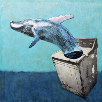 20120607192612-gone_whale_washing_smaller