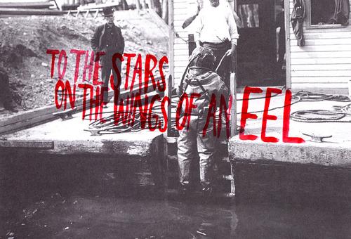 20120618191211-eel1cover