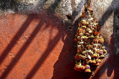 Faith___beyond__hinduism__-_flowers_of_faith