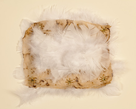 20120628172957-feather_pillow