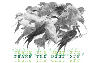 20120630201432-shake_the_dust_off_sm