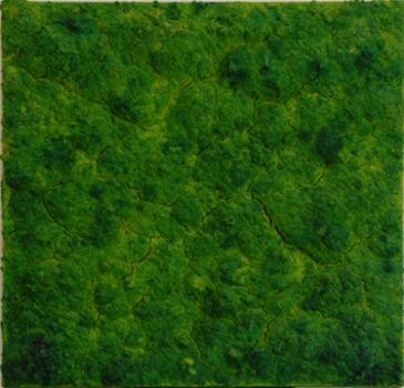 20120704100909-web_bosco_organicwork2008mixta_lienzo_verde80x80cmlow1311
