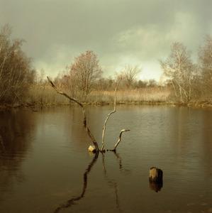 20120707025152-big_john_s_pond_late_winter__2002